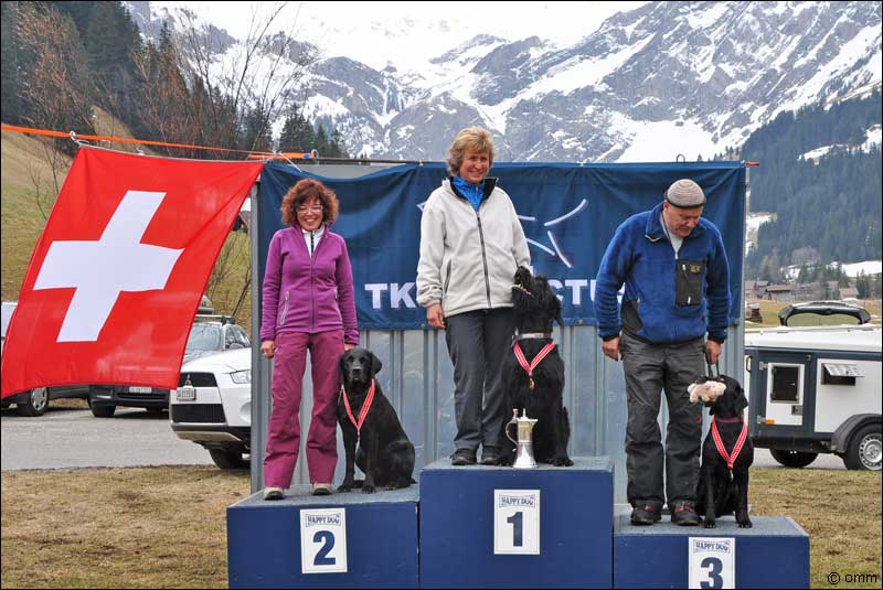 Swiss Championship for Avalanche Dogs 2011
